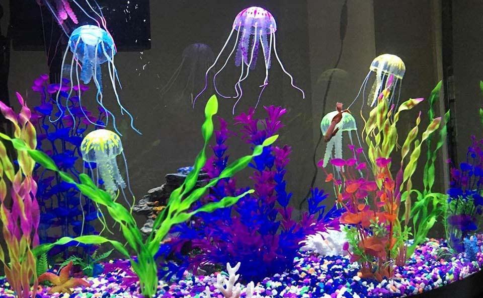 Méduse décorative d'aquarium